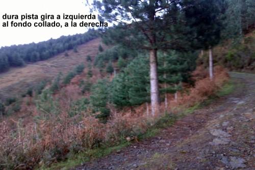 IMAG2278