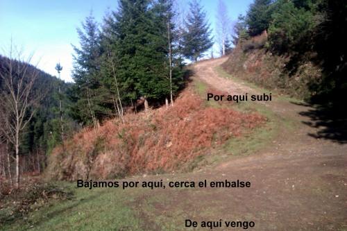 IMAG2308