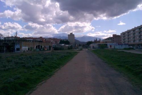 Tarazonica